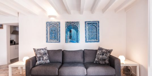 Airbnb Apartment  with Patio and Terrace!   Barrio Alicante