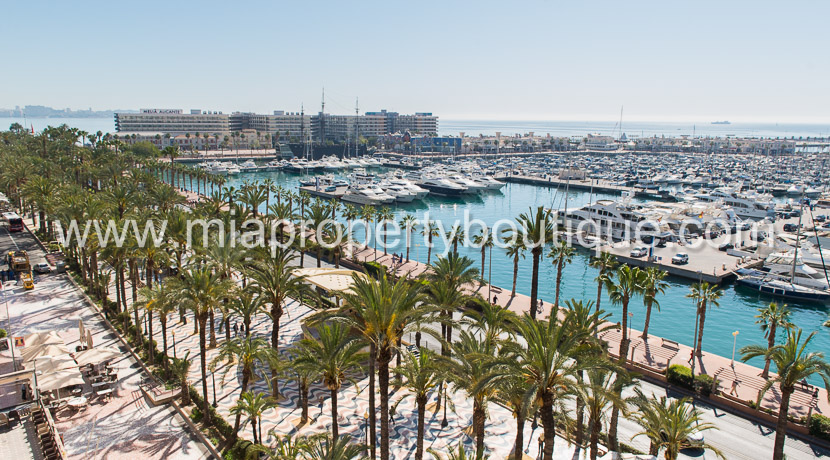flat for sale alicante seafront-8